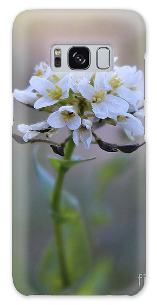 Spring In The Cimarrons Galaxy Case