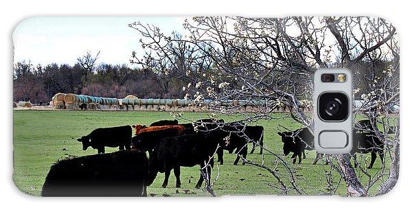 Spring In The Hay Meadow Galaxy Case by Sylvia Thornton