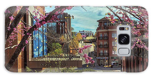 Spring In The Scenic City Galaxy Case