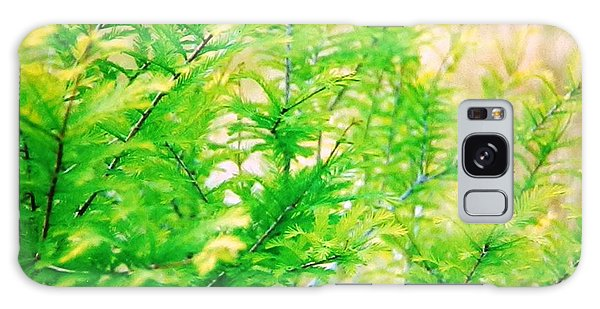 Spring Cypress Beauty Galaxy Case by Belinda Lee