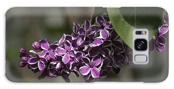 Spring Lilac Galaxy Case