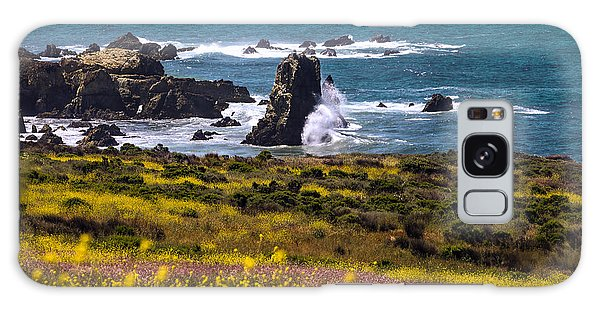 Spring On The California Coast By Denise Dube Galaxy Case
