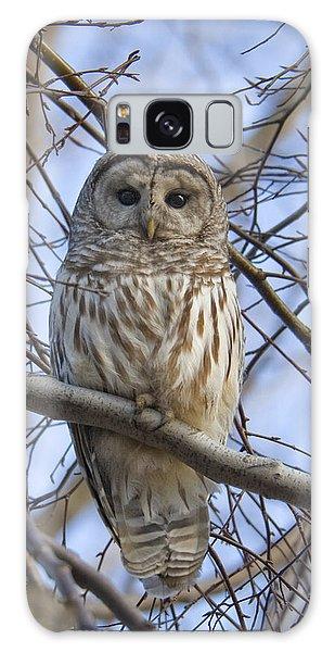 Spring Owl Galaxy Case