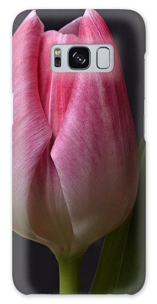 A Beautiful Pink Tulip Flower On Black Background Close-up Photography Floral Art Print Galaxy Case