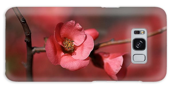 Spring Richness - Flowering Quince Galaxy Case by Joy Watson