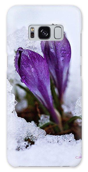 Spring Snow Galaxy Case
