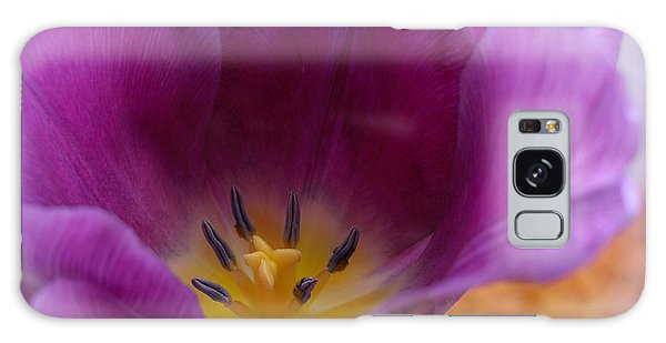 Spring Tulip Galaxy Case by Heidi Manly