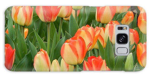 Spring Tulips Galaxy Case by Betty-Anne McDonald