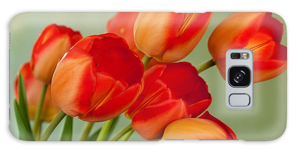 Spring Tulips Galaxy Case