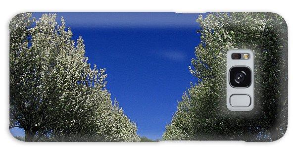 Spring Tunnel Galaxy Case