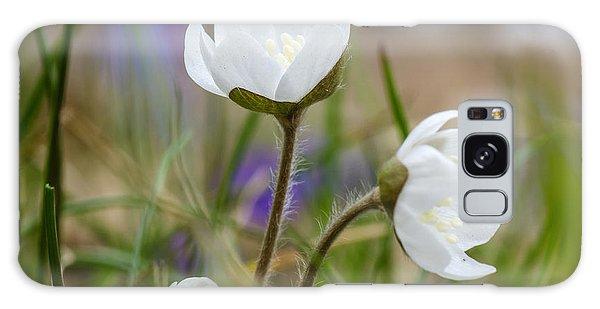 Springtime Blossom Galaxy Case