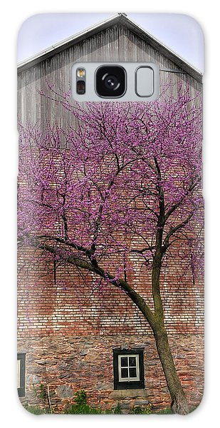 Springtime In Lancaster County Galaxy Case by Dan Myers