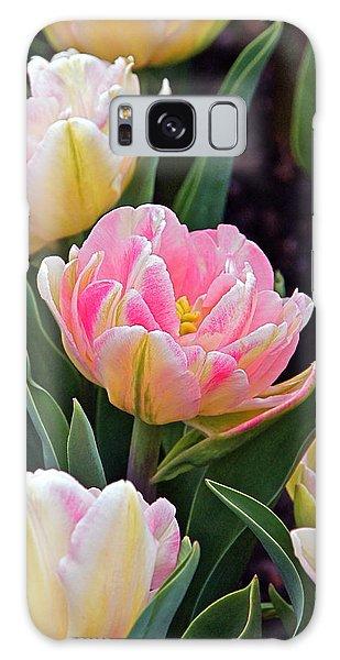 Springtime Sprites -- Parrot Tulips Galaxy Case