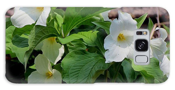 Springtime Trillium Galaxy Case by David T Wilkinson