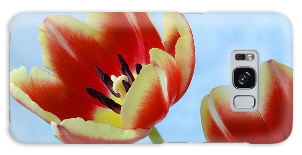 Springtime Tulips. Galaxy Case