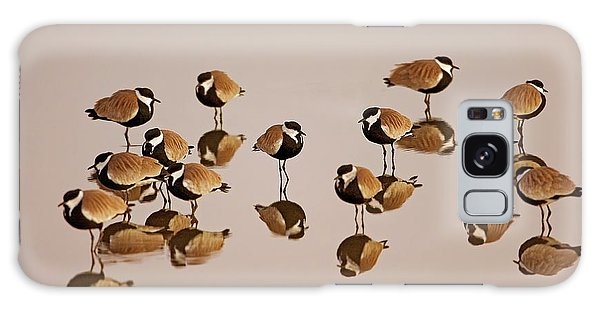Lapwing Galaxy Case - Spur-winged Lapwing (vanellus Spinosus) by Photostock-israel