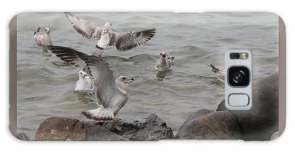 Squabbling Gulls Galaxy Case by Patricia Overmoyer