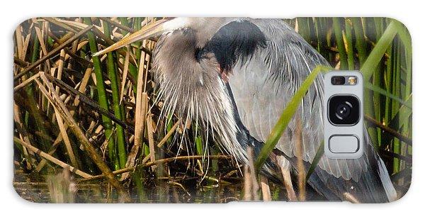 Squaking Blue Heron Galaxy Case
