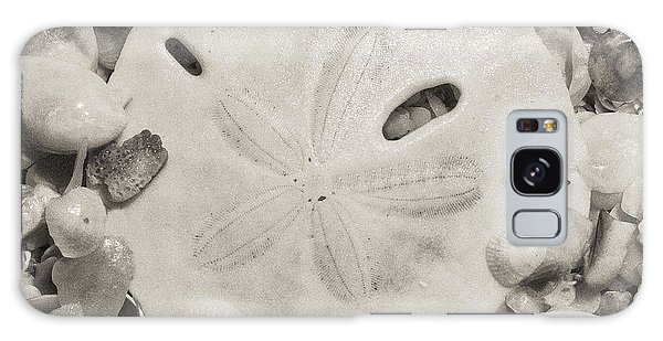 Square Sepia Sand Dollar Galaxy Case