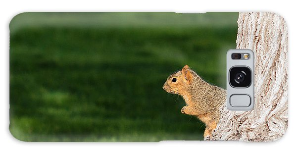 Squirrel And A Tree Galaxy Case