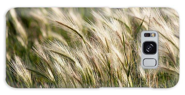 Squirrel Grass Galaxy Case