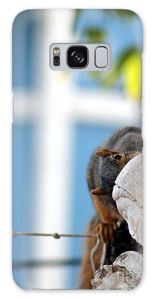 Squirrel In Hiding Galaxy Case