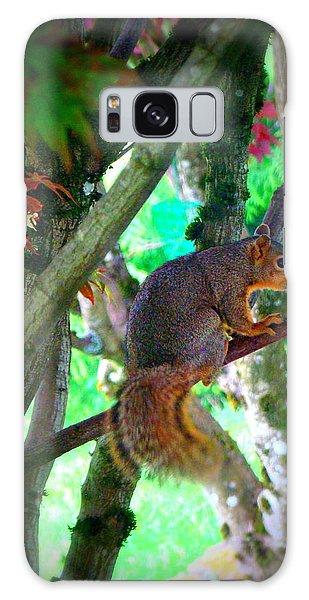 Squirrel In My Tree Galaxy Case