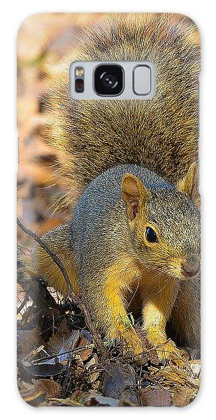Squirrel Galaxy Case by John Johnson