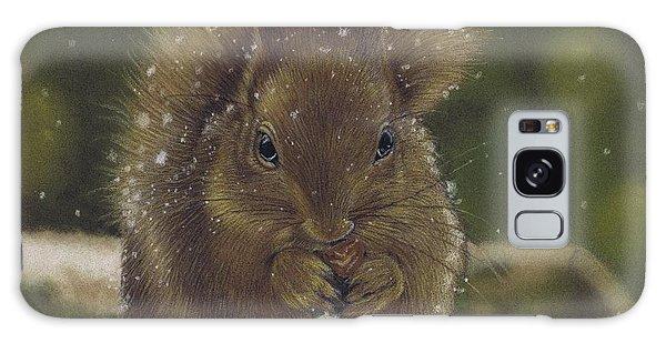 Squirrel Nutkin Galaxy Case