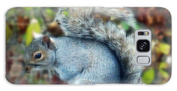 Squirrel Series 1 Galaxy Case
