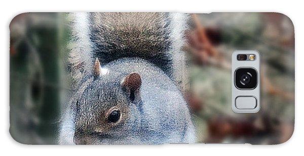 Squirrel Series 2 Galaxy Case