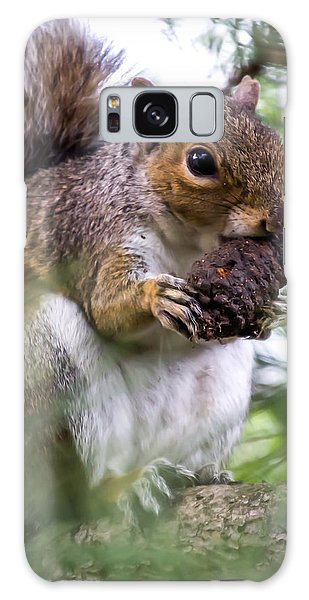 Squirrel With Pine Cone Galaxy Case