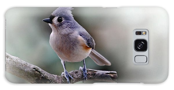 Titmouse Galaxy Case - Spring Time Titmouse by Skip Willits