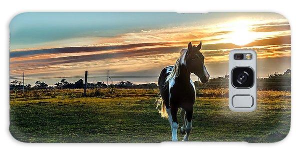 Stallion Sunset Galaxy Case
