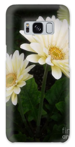 Stand By Me Gerber Daisy Galaxy Case