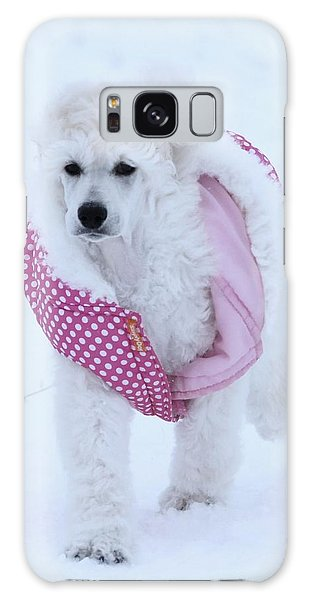 Standard Poodle In Winter Galaxy Case