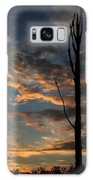 Standing Tall Among The Trees Galaxy Case