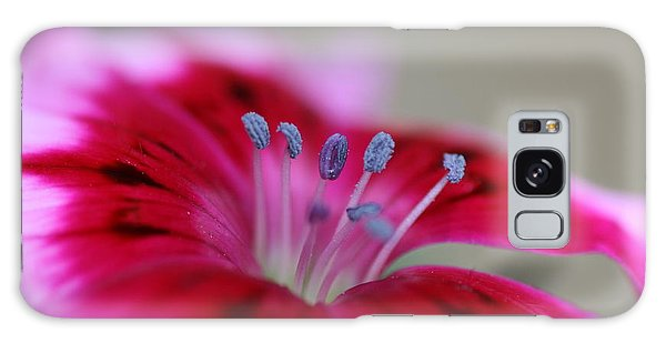 Standing Tall Sweet William Galaxy Case