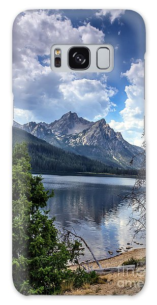 Stanley Lake View Galaxy Case