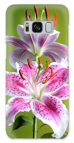 Galaxy Case featuring the photograph Star Gazer Lily by Vickie Szumigala