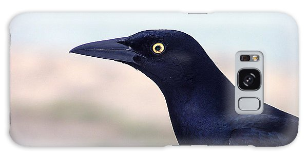 Stare Of The Male Grackle Galaxy Case