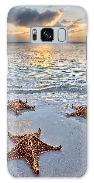 Galaxy Case featuring the photograph Starfish Beach Sunset by Adam Romanowicz
