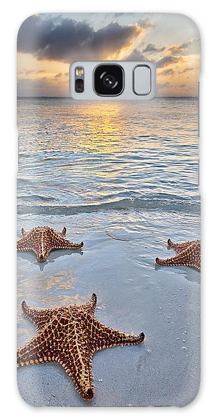 Starfish Beach Sunset Galaxy Case