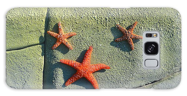 Starfish On The Rocks Galaxy Case