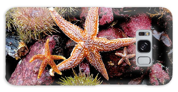 Starfish Galaxy Case by Sarah Mullin