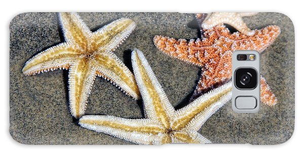 Starfish Galaxy Case by Tammy Espino