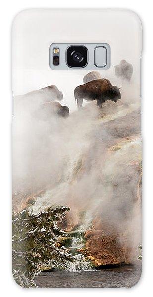 Steamy Bison Galaxy Case