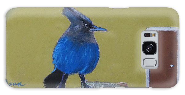 Stellar's Jay In San Francisco Bay Galaxy Case
