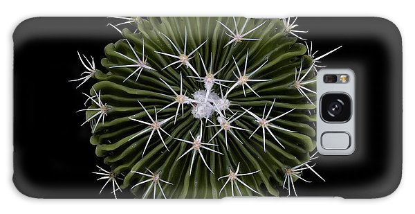 Cacti Galaxy Case - Stenocactus by Victor Mozqueda