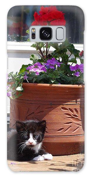 Still Life Kitty Galaxy Case by Tannis  Baldwin